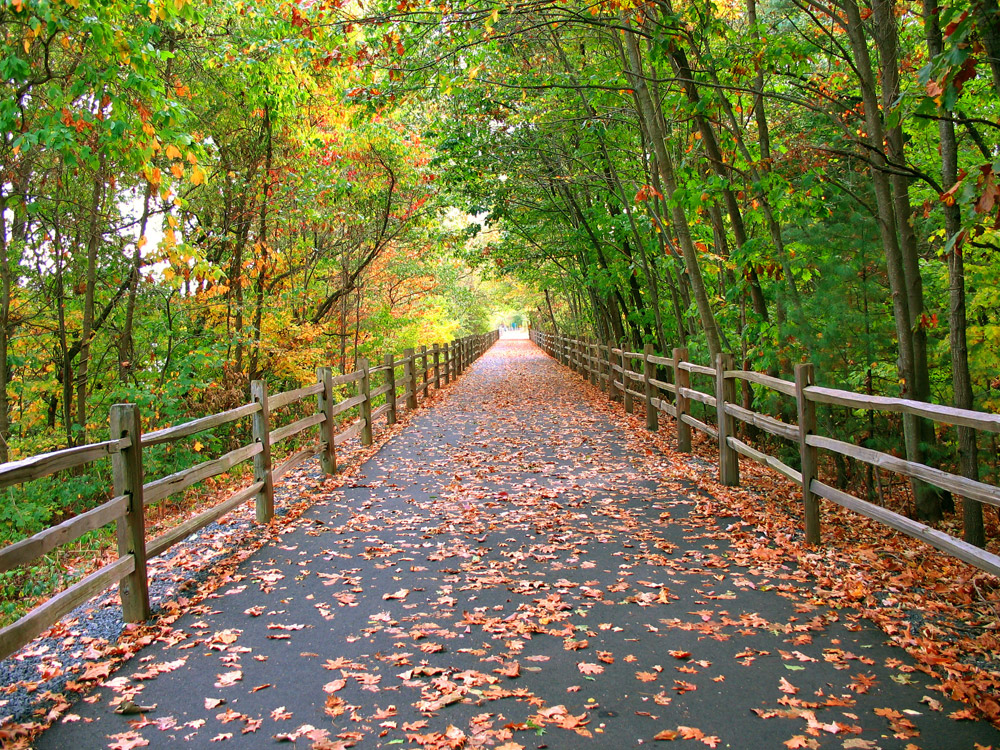 Fun Fall Activities on Long Island for the Whole Family